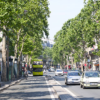 Boulevards Saint Germain des Prés